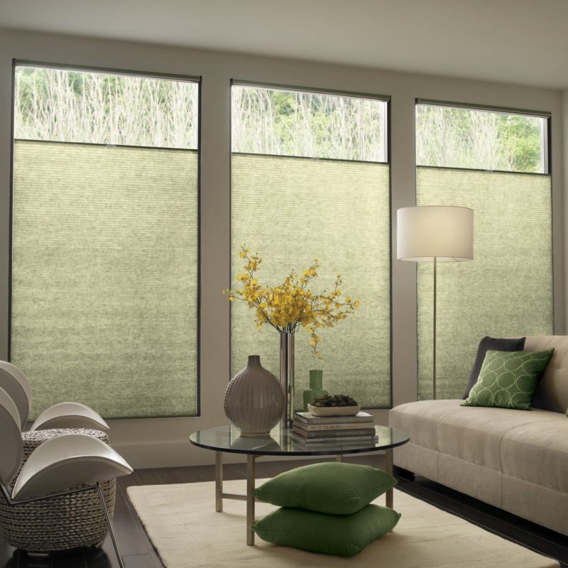 Top-Down/Bottom-Up Cordless EcoSmart Cellular Shades